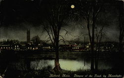 Glimpse of the Pond by Moonlight