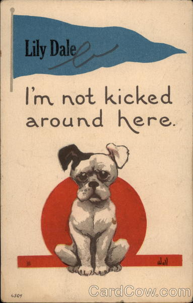 I'm not kicked around here  Lily Dale New York Dogs