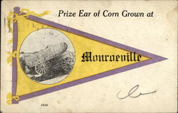 Prize Ear of Corn Grown at Monroeville