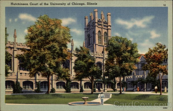 Hutchinson Court of the University of Chicago Illinois