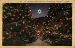 The Christmas Tree Street, Santa Rosa Avenue