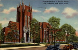 Peabody Museum of Natural History, Yale University Postcard