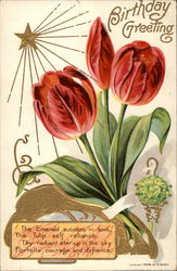 May Emerald Birthday Greeting (red tulips)