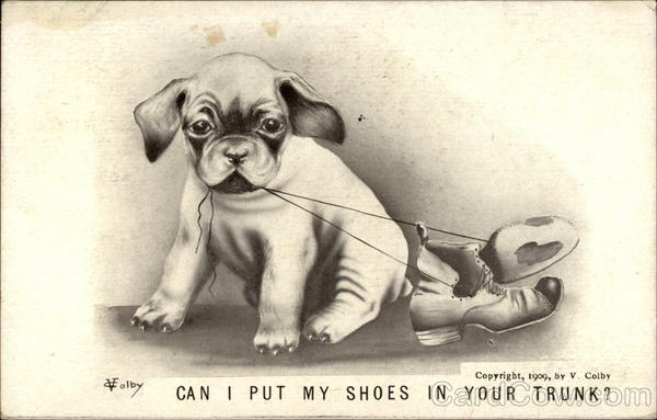 Can I Put My Shoes In Your Trunk? Dogs