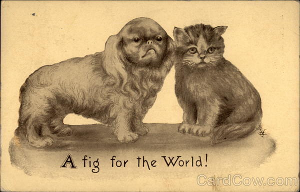 A Fig for the World Dogs Cats