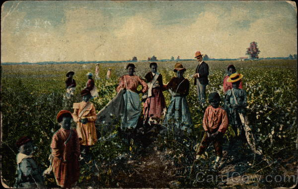 Slave women and children picking cotton under the watchful eye of their overseer