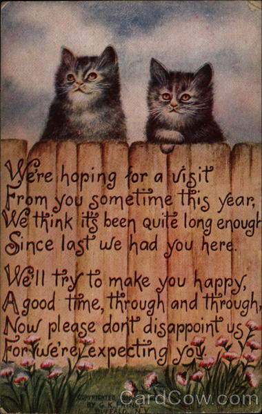 We're Hoping for a Visit Cats