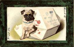 Vintage Puppy Postcards