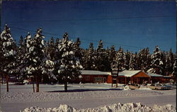 Brookside Inn Ski Lodge Postcard