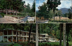 Falling Waters Motel Postcard