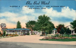 Blue Bird Motel