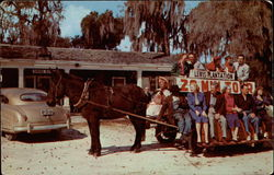 Mule & Wagon Tour of Old Lewis Plantation