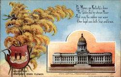 Kentucky State Flowre and Capitol Postcard