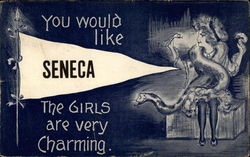 You Would Like Seneca