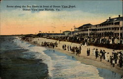 Scene Along The Sea Shore In Front Of Ocean View Hotel Postcard