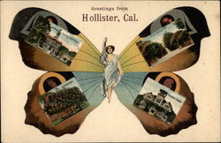 Greetings from Hollister Butterfly