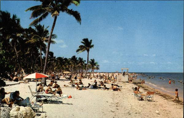 Beach at Crandon Park Miami Florida