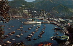 The Bay at Avalon from near the Carillon Tower Postcard