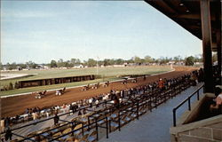 Red Mile Horse Track