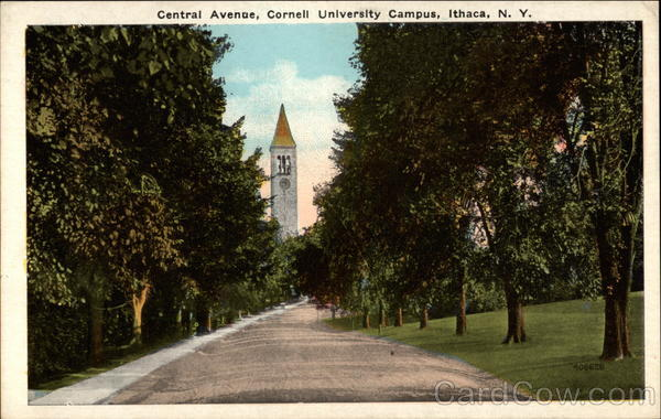 Central Avenue, Cornell University Campus Ithaca New York