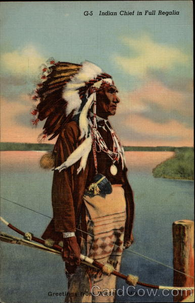 Indian Chief in Full Regalia Wadena Minnesota Native Americana
