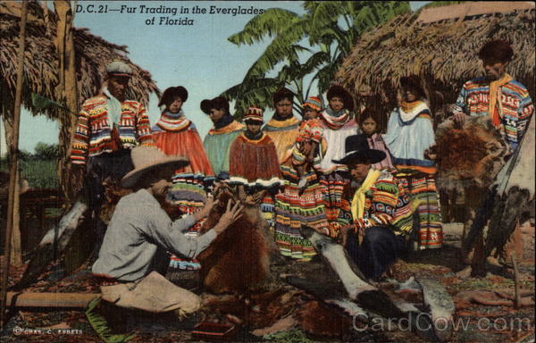 Fur Trading in the Everglades of Florida Native Americana