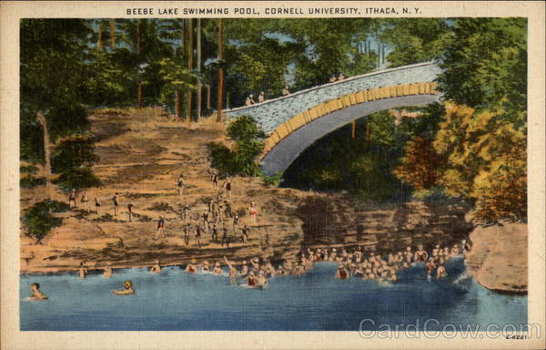 Beebe lake swimming pool cornell university ithaca ny for University of york swimming pool
