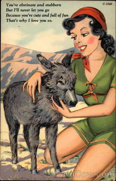 Romantic cartoon drawing of woman petting burro Swimsuits & Pinup