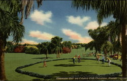 Clearwater Golf and Countrey Club