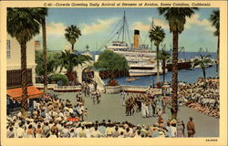 Crowds greeting Daily Arrival of Steamer at Avalon Postcard