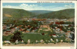 View of Salamanca, NY from Allegany State Park