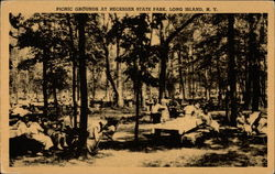 Picnic Grounds At Hecksher State Park