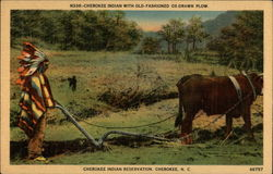 Cherokee Indian with Old-fashioned Ox-Drawn Plow, Cherokee Indian Reservation