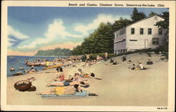 Beach and Casino, Chestnut Grove