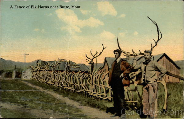A Fence of Elk Horns Butte Montana