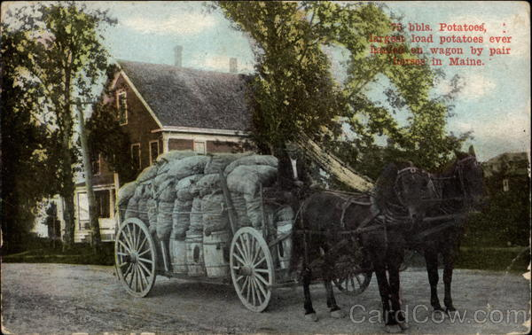 70 bbls. Potatoes, largest load potatoes every hauled on wagon by pair horses in Maine Houlton