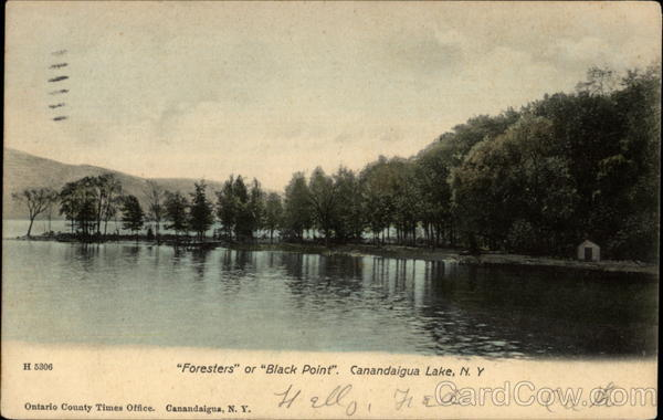Foresters or Black Point Canandaigua Lake New York