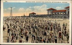 Bathing Scene, Jackson Park Municipal Bathing Beach Postcard