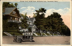 Forest Ave., north from Williams Ave