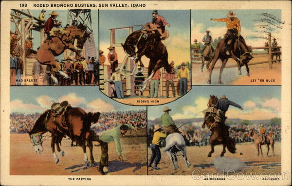 Rodeo Broncho Busters Sun Valley Idaho