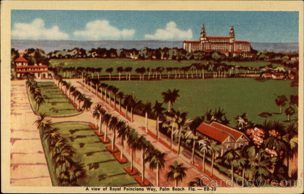 A View of Royal Poinciana Way Palm Beach Florida