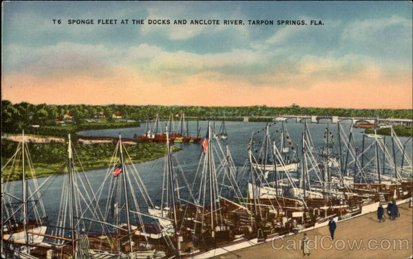Sponge Fleet at the Docks and Anclote River Tarpon Springs Florida