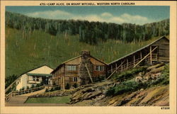 Camp Alice, on Mount Mitchell