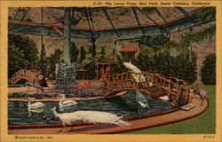 The Large Cage, Bird Park Postcard