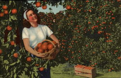 Orange Picking Time in Florida, woman in grove