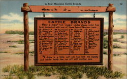 A few Montana Cattle Brands