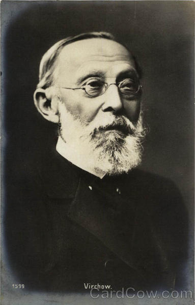 Doctor Rudolf Ludwig Karl Virchow Unidentified People