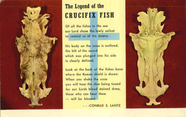 The Legend of the Crucifix Fish Religious