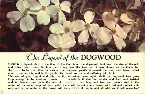 the legend of the dogwood flowers