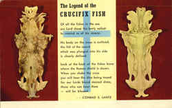 The Legend of the Crucifix Fish